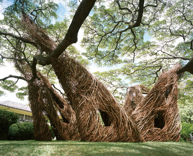Interview with American Sculptor Patrick Dougherty 3