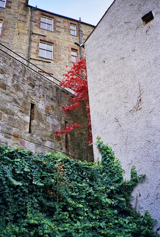 Brian Ferry Photograph 5