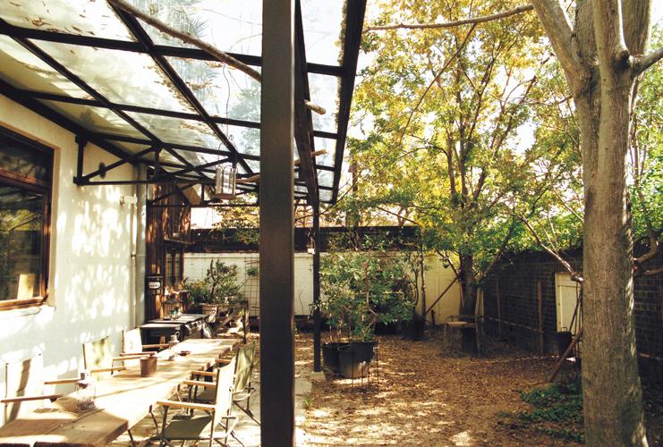 Tok's Back Garden