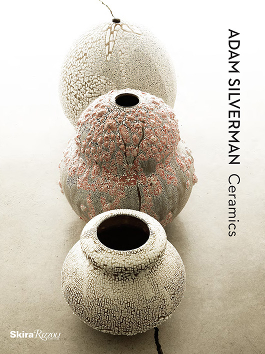 Adam Silverman Book Cover photographed by Stefano Massei