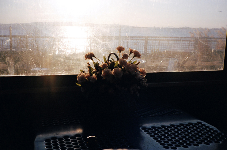 Brian Ferry Photograph 2
