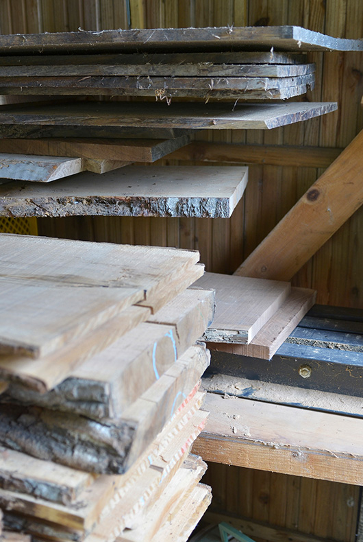 Wood that's ready to be cut and used to make furniture and wooden objects.