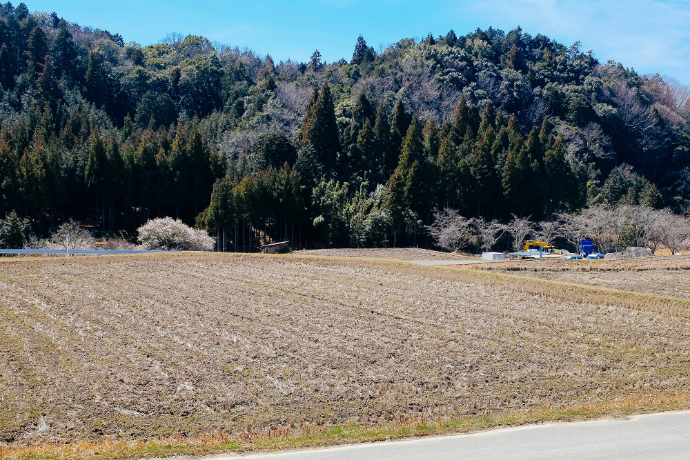 Beautiful nature in the town of Hino, home of Japanese potter Keiji Tanaka.