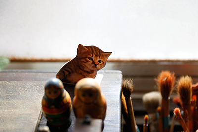 Cute cat picture and russian dolls inside his studio.