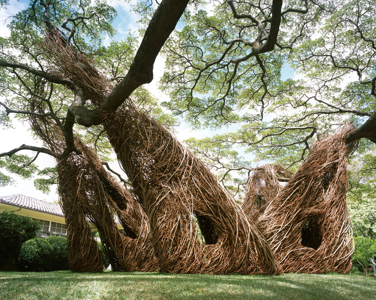 Na Hale 'O Waiawi Sculpture by Patrick Dougherty