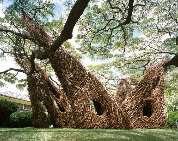 Na Hale 'O Waiawi Sculpture by Patrick Dougherty